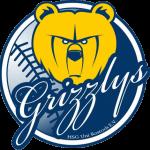 HSG Grizzlys Baseball Logo