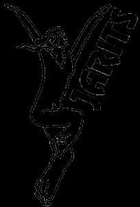 HSG Jarits Logo